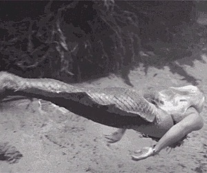 black and white and mermaid image