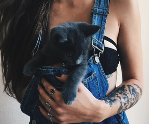 cat, girl, and tattoo image