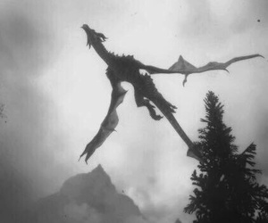 dragon, fantasy, and black and white image