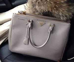 bag, Prada, and fur image