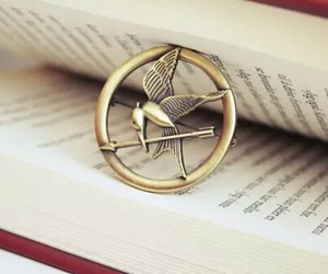 book, the hunger games, and hunger games image