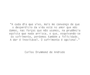 brasil, brazil, and carlos drummond de andrade image