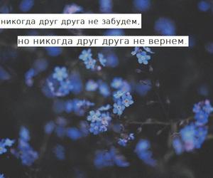 любовь, текст, and цитата image
