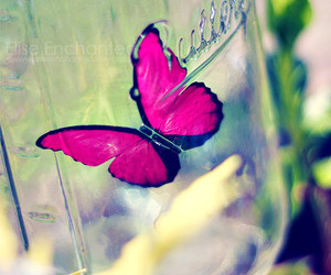 butterfly, pink, and cute image
