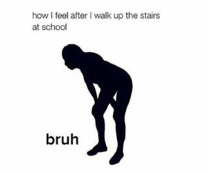 school, funny, and stairs image