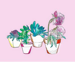 plants, flowers, and pink image