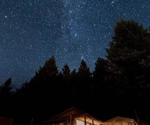 cabin, nature, and night image