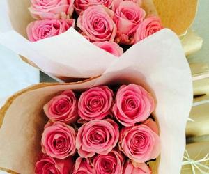 beauty, pink, and roses image