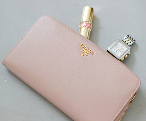blush, Prada, and wallet image
