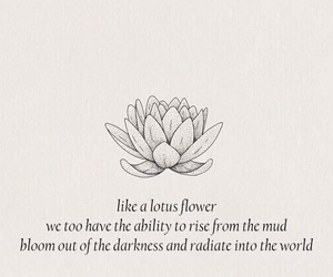 flowers, quotes, and lotus image