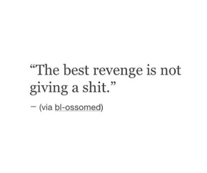 quote and revenge image