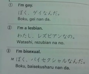 bisexual, translation, and gay image