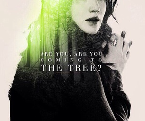 the hunger games, katniss everdeen, and the hanging tree image