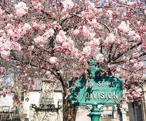 france, spring, and inspiration image