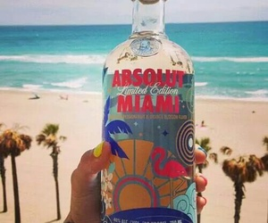 beach, Miami, and vodka image