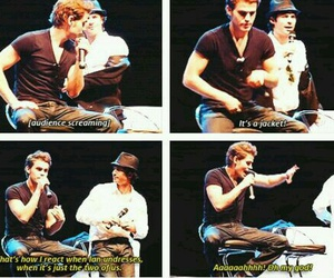 funny and tvd image