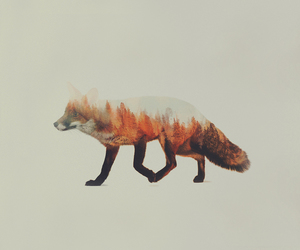 animals, art, and forest image