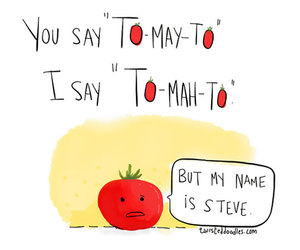 funny, tomato, and steve image
