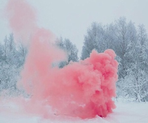 pink, snow, and winter image