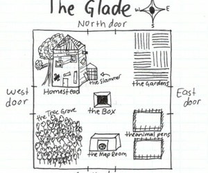 thomas, the maze runner, and the glade image