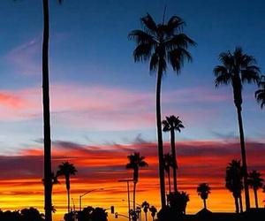 paradise image