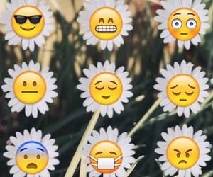 emoji, background, and flowers image
