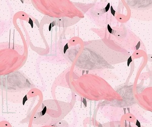 flamingo, iphone wallpaper, and pattern image
