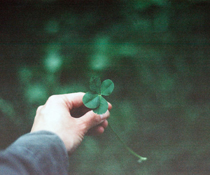 green, clover, and lucky image