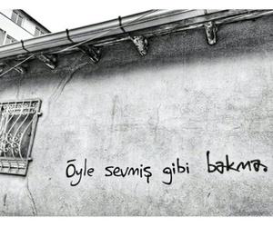 ask, turk, and siir image