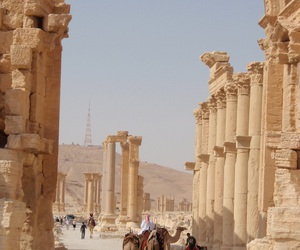 syria and palmyra image