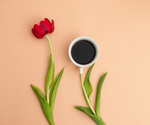 coffee, cup, and flower image