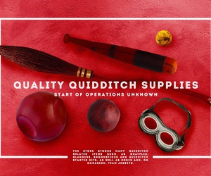 quidditch and harry potter image