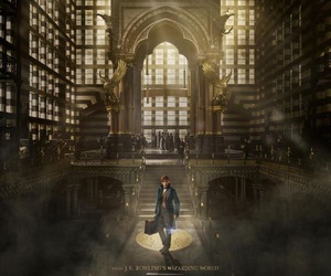 fantastic beasts, harry potter, and movie image