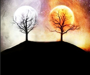 moon, sun, and trees image