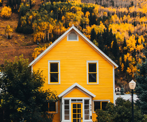 amarillo, trees, and house image
