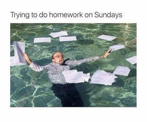 funny, school, and homework image