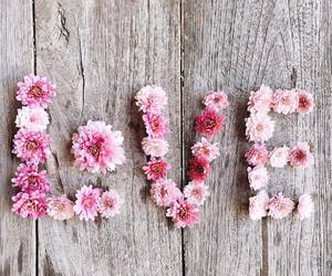 love, flowers, and flores image
