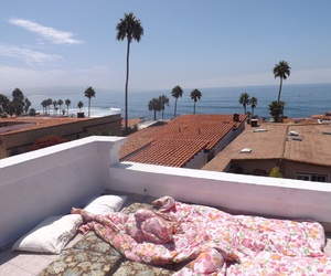 california, palm trees, and rooftop image