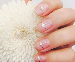 nails and point image