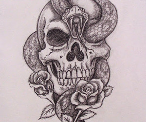 skull, snake, and rose image