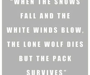 quote, game of thrones, and winterfell image