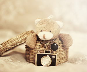 cute, teddy, and photography image