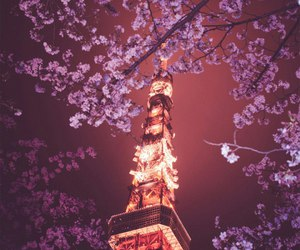 japan, night, and paris image