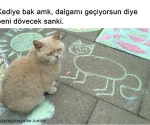 sözler, türkçe, and komik image