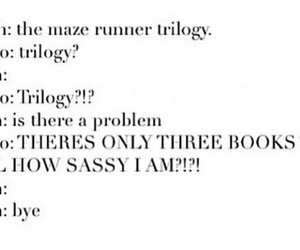 sass, trilogy, and the maze runner image