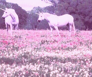 unicorn, flowers, and white image