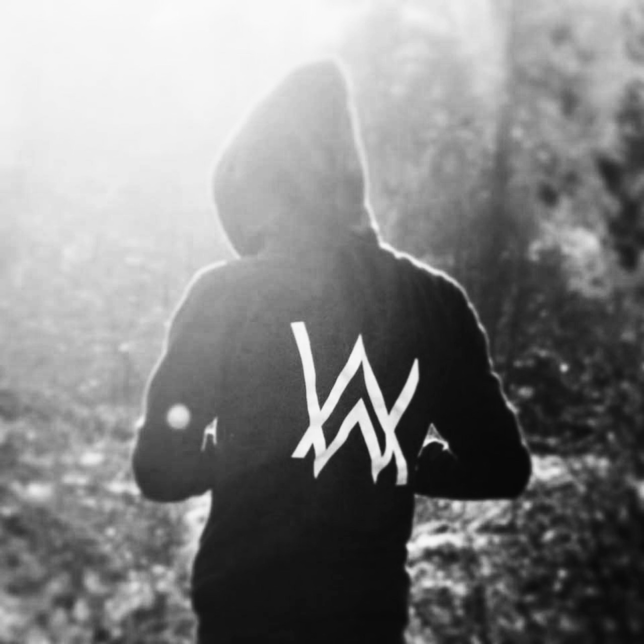 34 Images About Faded Alan Walker On We Heart It See More