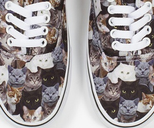 perfect, cats, and vans image