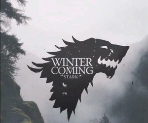 stark, game of thrones, and winter is coming image