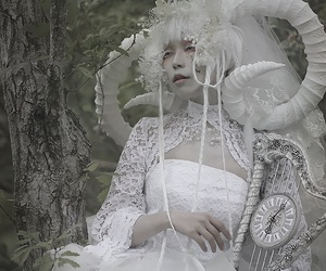 asian, forest, and white image